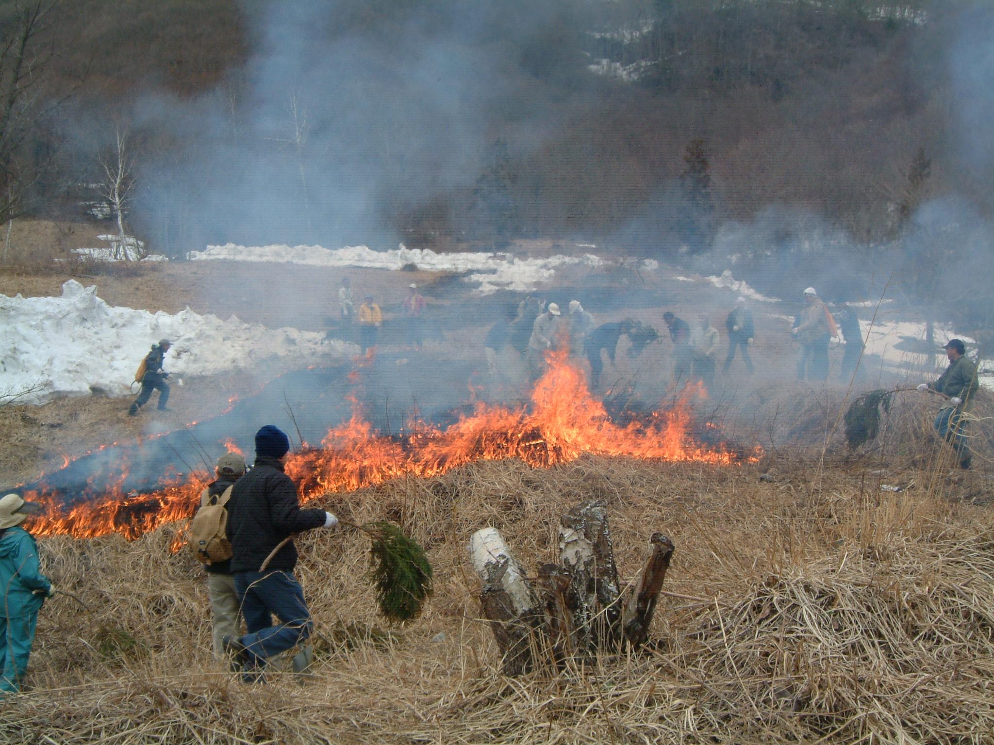 4月の野焼き