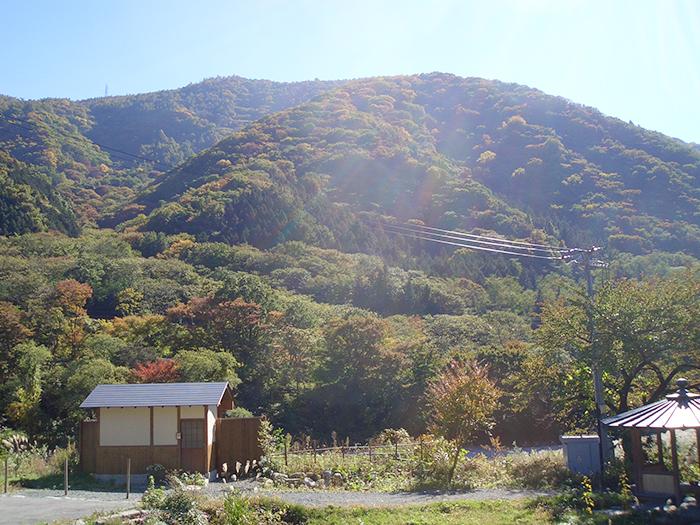 20180927-umenomitsu04.jpg