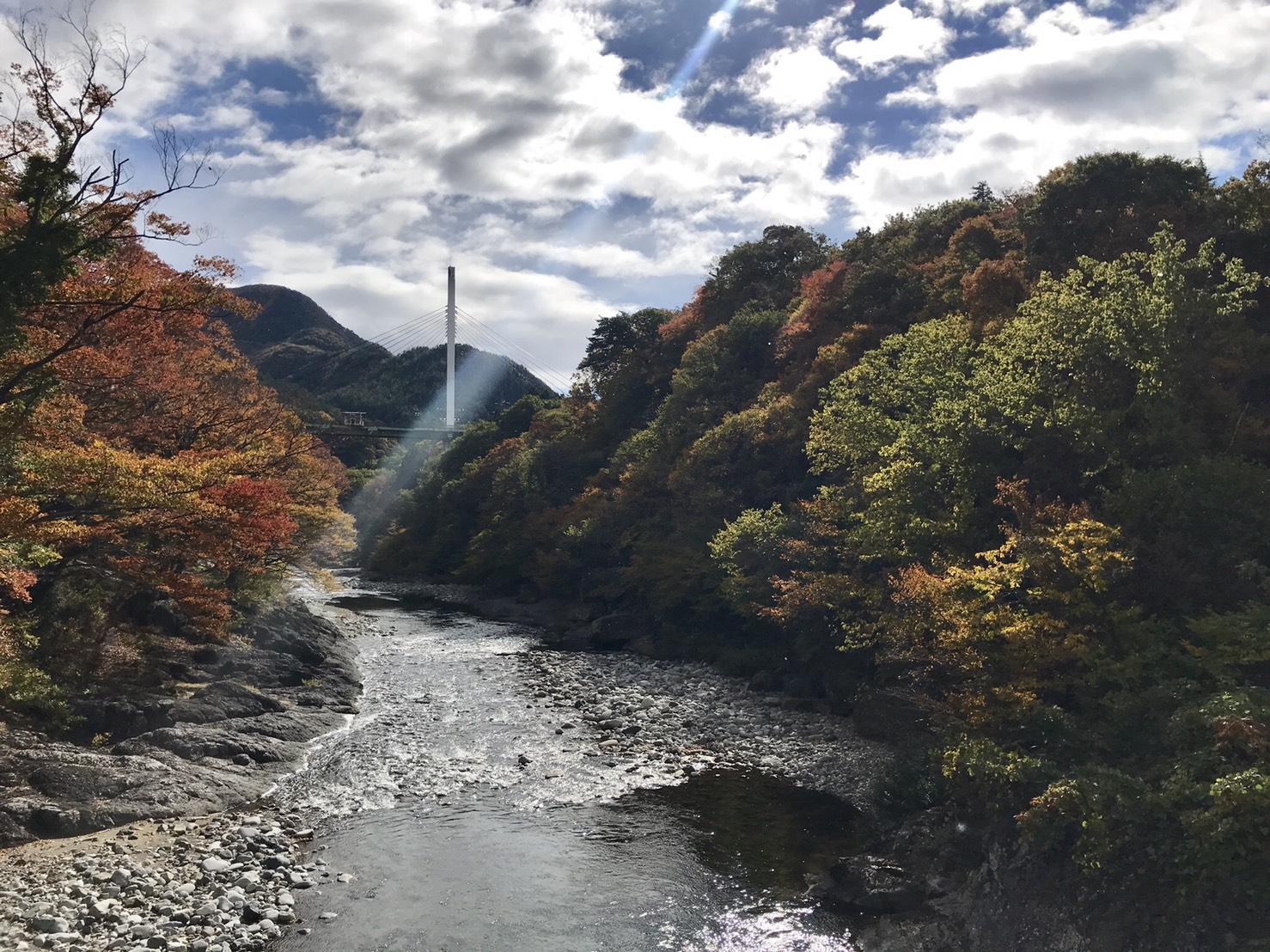 20181104-suwakyo.jpg